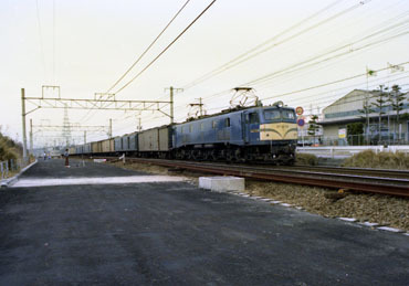 Img1981_2
