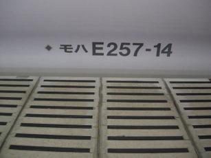 Dscn5653